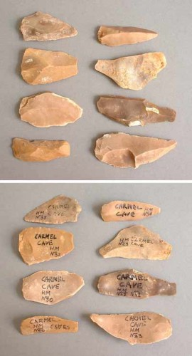 Paleolithic stonetools from the caves on mount Carmel